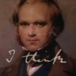 Darwin gegen Kreationismus christlicher Fundamentalisten
